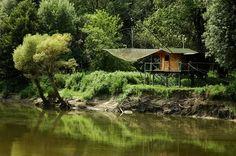 MOKŘADY DOLNÍHO TOKU DYJE V nejjižnějším cípu Moravy, uprostřed hlubokých lužních lesů, se stékají dvě řeky Morava a Dyje. Jejich soutok je zároveň trojmezím České republiky, Rakouska a Slovenska. Oblasti se přezdívá Moravská Amazonie a nachází se zde nádherná příroda bez zásahu civilizace obydlená vzácnými živočichy.