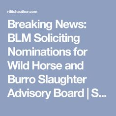 Breaking News: BLM Soliciting Nominations for Wild Horse and Burro Slaughter Advisory Board | Straight from the Horse's Heart