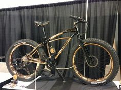 Vibe cycles copper plated fatbike.  Beautiful!