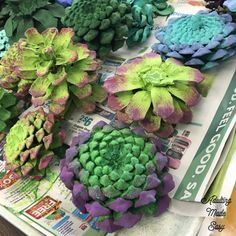 Pinecone succulent garden art project - age appropriate craft for older sped stu. - Pinecone succulent garden art project – age appropriate craft for older sped students! Nature Crafts, Fall Crafts, Christmas Crafts, Crafts For Kids, Diy Crafts, Christmas Garlands, Paper Crafts, Primitive Christmas, Country Christmas