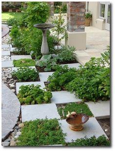 Checkerboard garden pattern