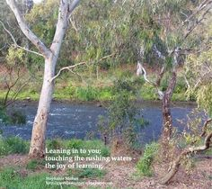 Leaning in to you; touching the rushing waters – the joy of learning.