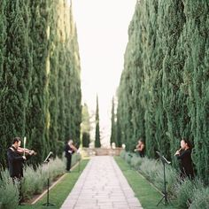 This magical #BeverlyHills #wedding had a string quartet lining the aisle into the reception! #weddinggoals | Photography: @carmensantorelliphoto | Event Design: @casasiena | Event Planning: @bridalandeventlounge | Venue: Greystone Mansion