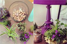 DIY Déco - Terrarium #plantes #terrarium #homemade #diy #deco