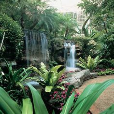 Opryland Hotel Nashville TN...even more beautiful than before