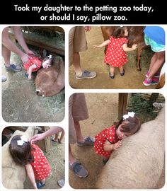 Her Love For Animals Is Beautiful, my son would totally do this as soon as he slapped the animal first.