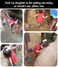 """It's a pillow, It's a pet, It's a PILLOW PET!"""