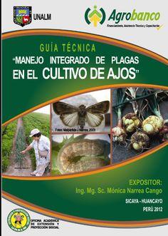 Libros de Agronomia Gratis: AJOS