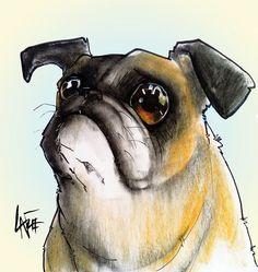 Pug #7 Drawing  - Pug #7 Fine Art Print