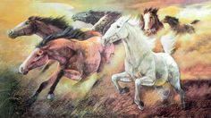 Wild Race (Reprint on Paper - Unframed) Horse Posters, Animal Posters, Horse Artwork, Sculptures, Racing, Horses, Paper, Pictures, Painting