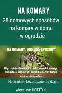 28 domowych i naturalnych przepisów na odstraszenie komarów. Bezpieczne nawet dla małych dzieci. Skuteczne i naturalne hotto.pl-na-komary-do-domu-do-ogrodu #komary #domowe #sposoby #zdrowie #naturalne #nakomary #komar #insekty #zioła #rośliny#ogród #dom #przepisy #rady #porady