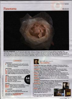 Our Alexander James exhibition (Dec 2012) received a mention in The Telegraph's Seven Magazine, Panorama