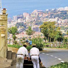 A diversão pode estar literalmente ao virar de cada  esquina na Madeira. Se subir ao Monte vai ficar a conhecer uma das atrações mais ... Funchal, Portugal, Atlantic Ocean, Pilgrim, Trees To Plant, Paths, The Good Place, Transportation, Dolores Park