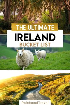 his is the ultimate Ireland bucket list you need to steal for your next trip to Ireland. This list features the most amazing, unique and beautiful destinations in Ireland. Ireland Bucket List Locations | How To Plan Your Ireland Road Trip | planning a road trip in Ireland | Ireland travel tips | Travel guide to Ireland | what to do in Ireland | what to see in Ireland | things to know when traveling in Ireland | things to know before visiting Ireland | Ireland travel guide |