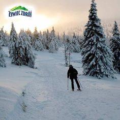 Szrenica, Polska/  Winter mountains in Poland