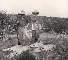 Billedresultat for karen blixen safari