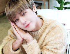 Park Jihoon Produce 101, Baby Park, Kpop, 3 In One, Man Humor, Prince Charming, K Idols, Webtoon, Parks