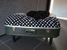 My DIY Dog Bed from Old Suitcase @Lucie Légaré Légaré Corriveau peut-être que tu pourrais faire pareil, mais avec une piscine hors terre à la place? Ou un container?