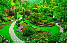 167 best butchart gardens and victoria island canada bc images on the butchart gardens is a group of floral display gardens in brentwood bay british columbia canada located near victoria on vancouver island altavistaventures Choice Image