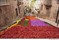 Temps de Flors Festival, Girona, Spain