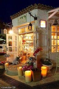 flower shop; cafe; antique; book shop