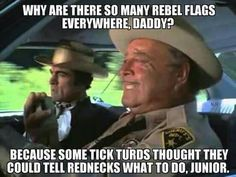 Why are there so many rebel flags everywhere. .