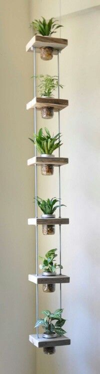 Nice idea for rooting cuttings or ivies, or trailing easy growers like sweet potato vines or spider plants...lots of design and size possibilities...think I might use good nylon rope to hang it though..