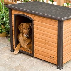 Precision Pet Extreme Log Cabin Small 33.3 in. x 24.6 in. x 22.2 in. ** Learn more by visiting the image link.