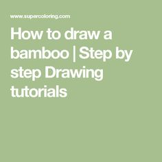 How to draw a bamboo | Step by step Drawing tutorials