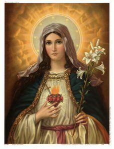sacred-heart-of-mary