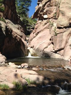 Colorado has something for every price point, including luxurious and expensive excursions all the way down to these FREE outdoor activities! Paradise Cove Colorado, Florissant Colorado, Colorado Springs Camping, Visit Colorado, Outdoor Activities, State Parks, Trip Advisor, Beautiful Places, Scenery