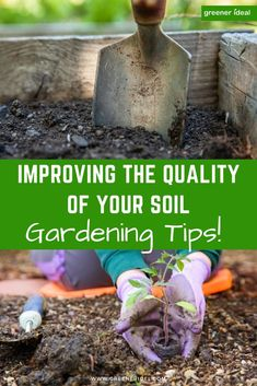 Good quality soil is essential for a healthy and abundant garden. Without fertile, nutrient-packed soil, your careful efforts at sewing, weeding and tending your garden or allotment will all be in vain. Follow these simple tips to learn how to improve soil quality in your garden! #gardening #gardeningtips  #organic #guidetogardening #gardeningtips #organicgardening #Soil #GardenSoil #SoilTips #GuideToGardening