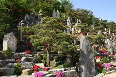 愛松(旧 正二品の松) - WolMyeongDong(キリスト教福音宣教会)