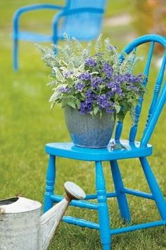 Proven Winners - Container Garden Design - Foliage and Texture in Container Gardening and Annuals Outdoor Projects, Garden Projects, Garden Ideas, Diy Garden, Outdoor Ideas, Garden Chairs, Garden Furniture, Balcony Garden, Chair Planter