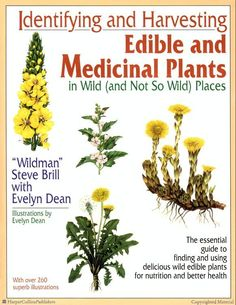One of the BEST Books I have Used: Identifying and Harvesting Edible and Medicinal Plants in Wild (and Not So Wild) Places by Steve Brill & Evelyn Dean, shows readers how to find & prepare more than 500 different plants for nutrition & better health, including such common plants as mullein, stinging nettle, cattail, and wild apricots. More than 260 detailed line drawings help readers identify a wide range of plants, many of which are suited for cooking by following the more than thirty…