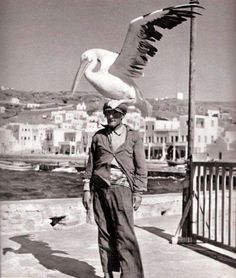 Birdman of Mykonos.