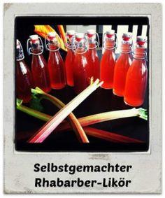 Rezept: Selbstgemachter Rhabarber-Likör