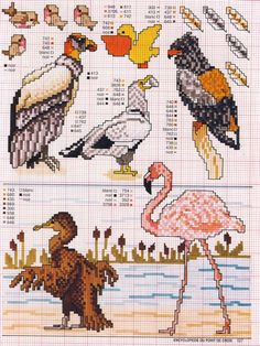 Uccelli Punto Croce