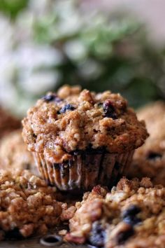 A few things first before I give you the goods on these muffins. I had trouble with the title because there are too many key ingredients in this recipe so I settled on EVERYTHING MUFFINS. That basically covers it because I used everything I could put my hands on and threw it in a bowl.…