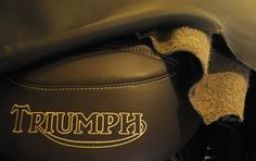 Triumph Vicenza - Selle exclusive