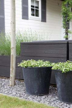 New garden fence black planters Ideas