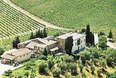 #Ruffino #wine vineyard in Tuscany