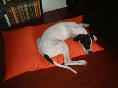 DIY Dog Bed from Pillows | Sew Inspiring, Sew Me
