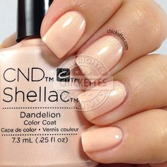 CND Shellac Dandelion - swatch by Chickettes.com. CND Shellac is available at www.esthersnc.com