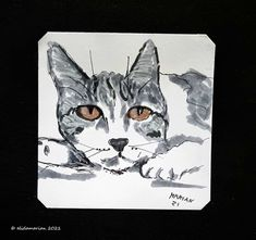 Art Journals, December, Photographs, Paintings, Abstract, Cats, Animals, Shop Signs, Summary