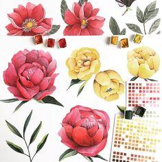 @namwannpastel Many flowers #flowers