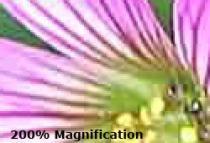 JPEG format information, compression...