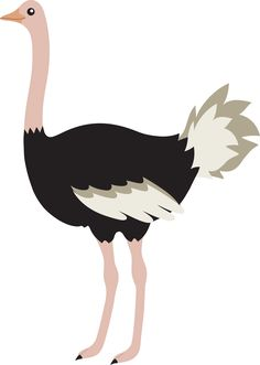 Cute Cartoon Ostrich Images & Pictures - Becuo Cartoon Pics, Cartoon Drawings, Cute Cartoon, Cute Drawings, Ostriches, Bird Silhouette, Animal Coloring Pages, Cuttings, Jungle Animals