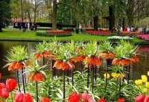 Taman Bunga Terindah Ini Membuat Anda Malas Untuk Pulang