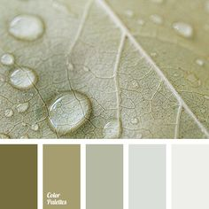 A calm, monochrome range of brown-green shades is suitable for people who want peace and comfort. It is ideal for a bedroom, a living room or a kitchen..
